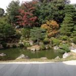 広々とした見事な庭園が素晴らしい!【仁和寺】 -リピーターのための、おすすめ京都の穴場ガイド-