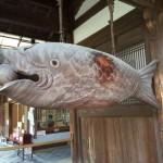 異国情緒を楽しめる【萬福寺】 -リピーターのための、おすすめ京都の穴場ガイド-