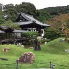 春の桜、秋の紅葉だけでなく・・平時も美しい!【高台寺】 -リピーターのための、おすすめ京都の穴場ガイド-