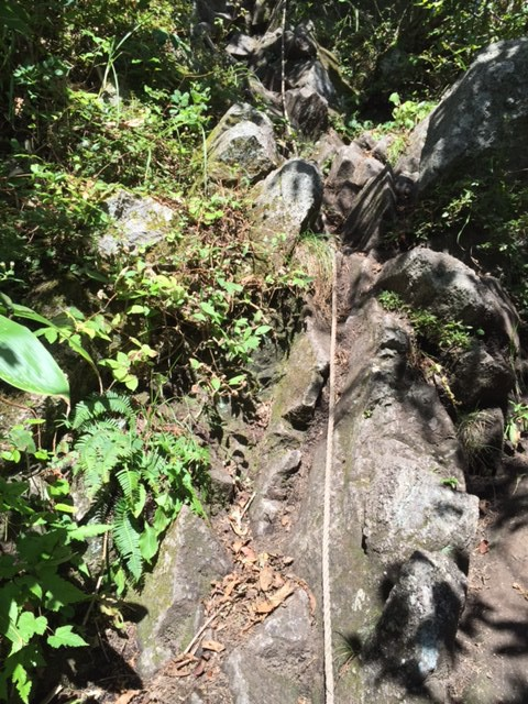 中国やまなみ街道近くの「山へ行こう!」(2) -ハイキングの方も、健脚の方も【三瓶山】はいかがでしょうか?-
