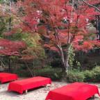 きっと、それ程混まないはず! おすすめの【京都秋の紅葉スポット】のご紹介です! -リピーターのための、おすすめ京都の穴場ガイド-