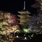 京都の紅葉の「ライトアップ」は一見の価値がありますよ!【東寺】編 -リピーターのための、おすすめ京都の穴場ガイド-