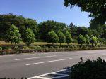 6月19日:東京 青山ヘミシンク・センターで「アカシックレコード」コースを担当させて頂きました!