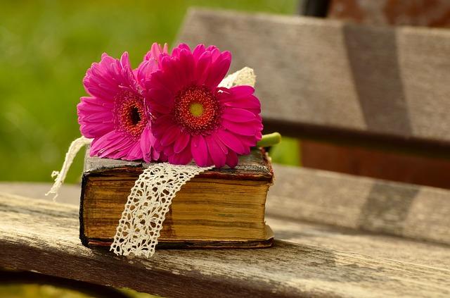 イスラム教の神秘主義【スーフィズム】を俯瞰できる書籍です。 -「スーフィズム入門」-