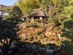 落ち着いた庭園が素晴らしい!足利氏の菩提寺【等持院】 -リピーターのための、おすすめ京都の穴場ガイド-