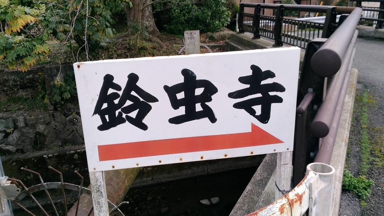 鈴虫説法、風流なお庭など:多くの見所がある【鈴虫寺】は、特に女性に人気ですね。 -リピーターのための、おすすめ京都の穴場ガイド-
