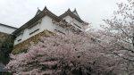 津山線で行く!桜の名所100選にも選ばれた【津山城】への旅! -青春18きっぷでスローな旅をしよう-