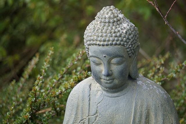 「ブッダの生涯」を知るおすすめ本【日本人が知らないブッダの話】のご紹介です。 《原始仏教・原始仏典について》