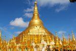 テーラワーダ仏教の「学び方」がよく分かります!【悟らなくたっていいじゃないか】