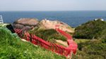 CNNの「日本の最も美しい場所31」に選ばれた絶景の神社! 山口県の【元乃隅稲成神社】に感動です!